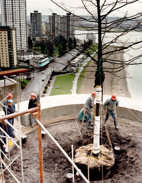 Pictured is the original tree as it was installed atop Eugenia Place in the late 1980s. Photo courte