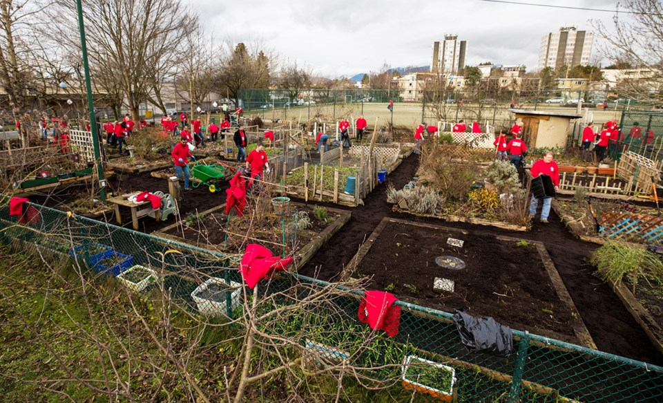 Trend Micro staff visited a community garden in Vancouver