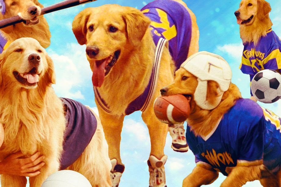 A lot of Vancouverites got their first taste of the movie business thanks to Air Bud and its litter of athletic animal sequels and spinoffs.