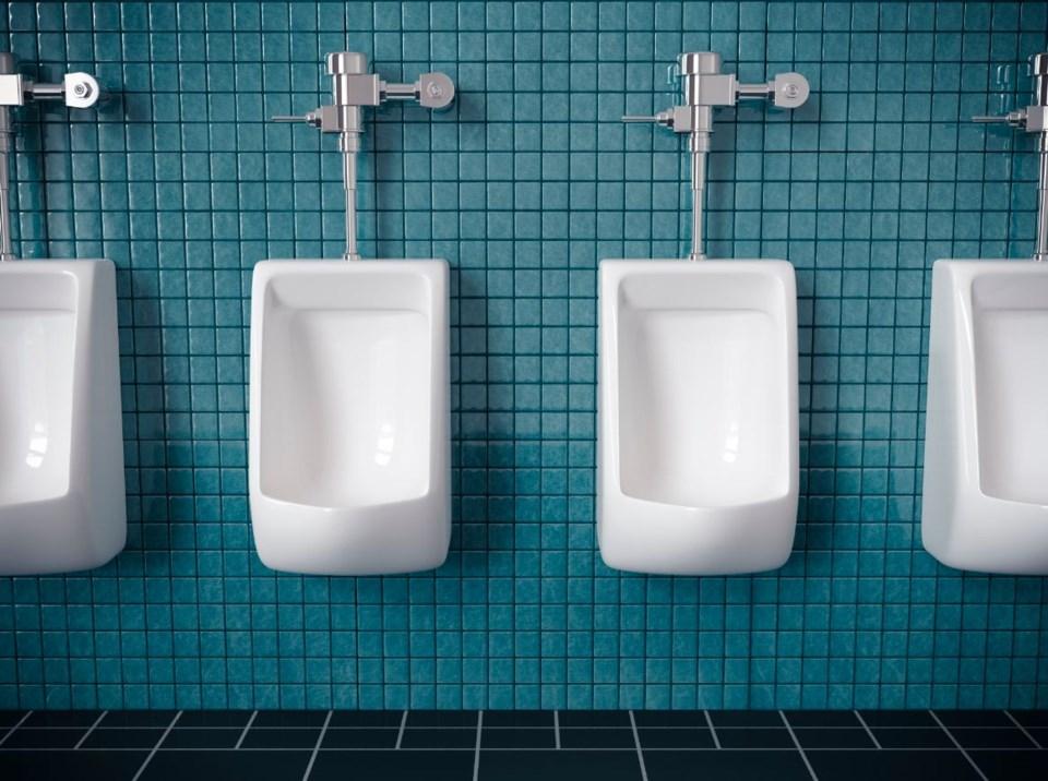 Columnist and public washroom aficionado Allen Garr sees TransLink's recent survey as a giant stall,