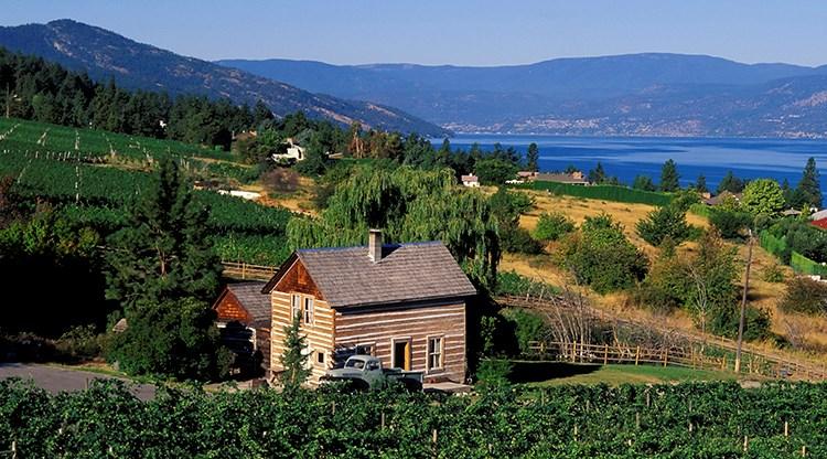 Oakanagan lake vineyard vacation home cabin
