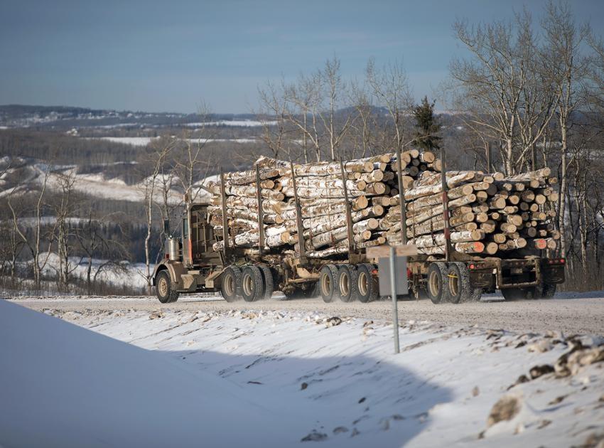 timber-site-c