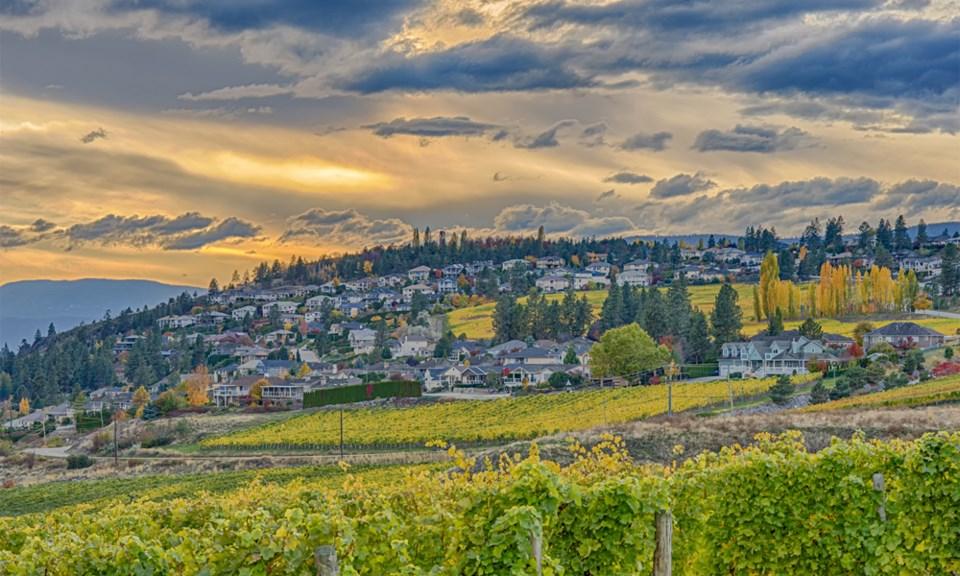 Kelowna houses vineyard