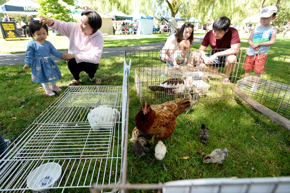 Visitors check out a Muscovy duck.