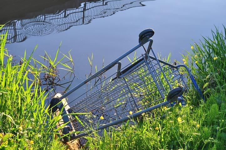 shopping cart dumped