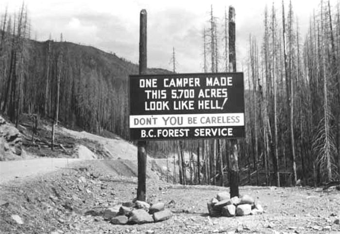 forest fire billboard 1950