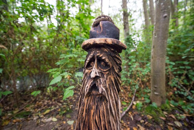 Residents have spotted a collection of whimsical wood carvings on the trails in Ladner Marsh.