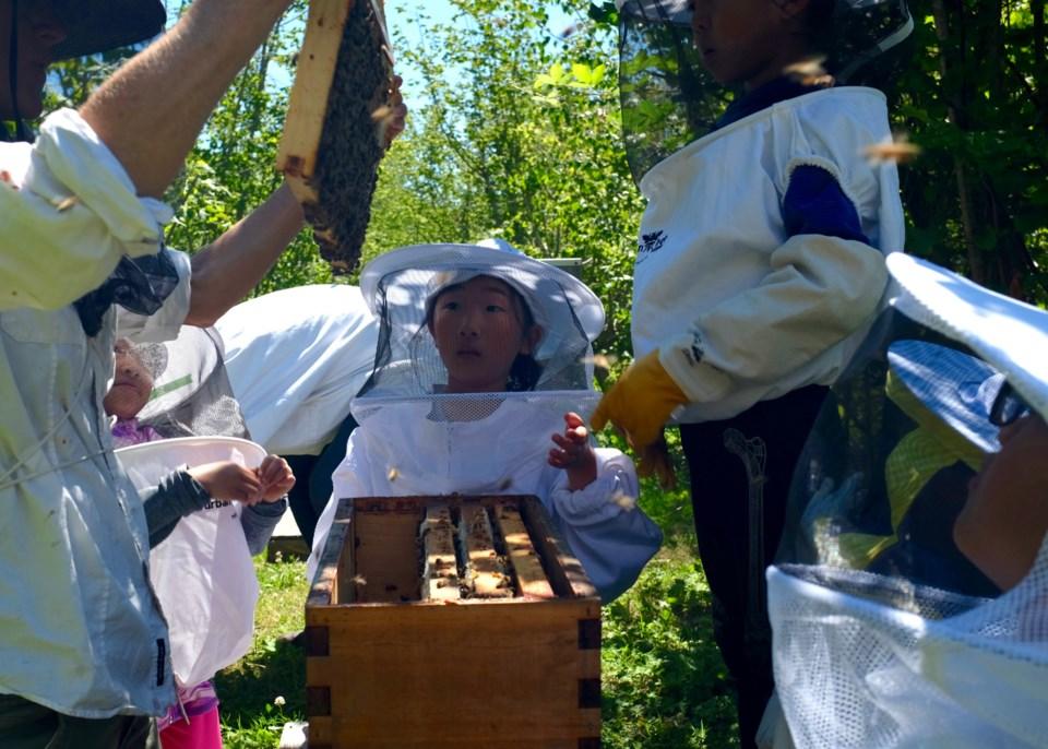 community foundation bee camp