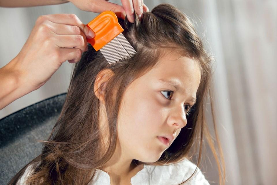 Lice Clinics 2