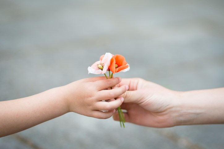 Child gives adult a flower