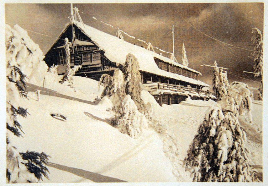 MEMORY LANE: Grouse Mountain naturally inspired North Vancouver artist _3