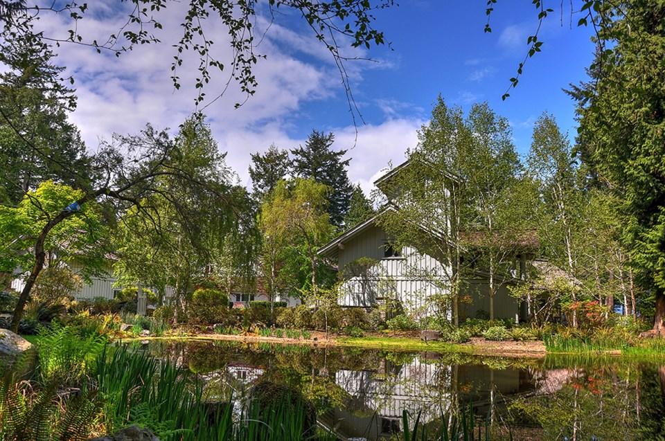 Subtle Islands house pond
