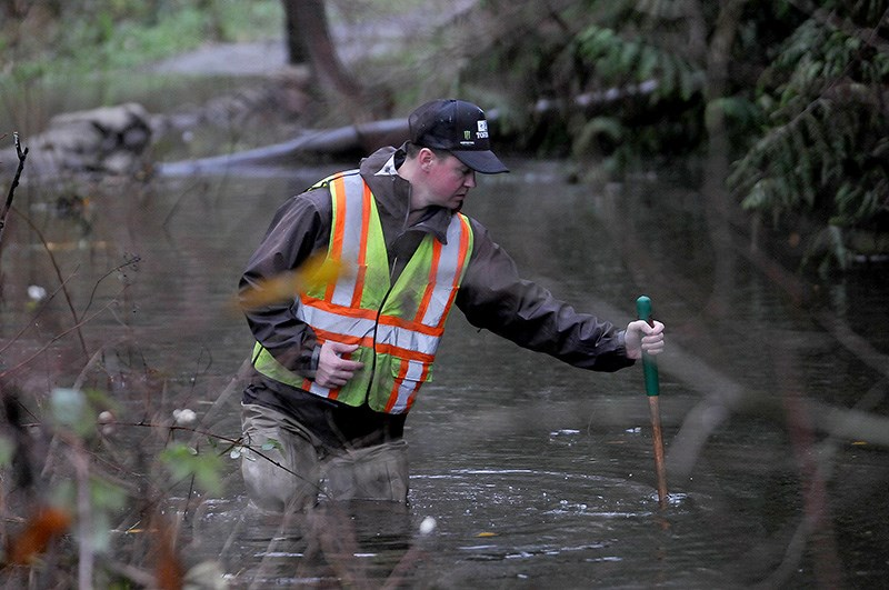 MARIO BARTEL/THE TRI-CITY NEWS