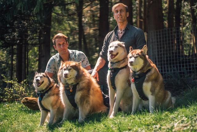 Dog dudes