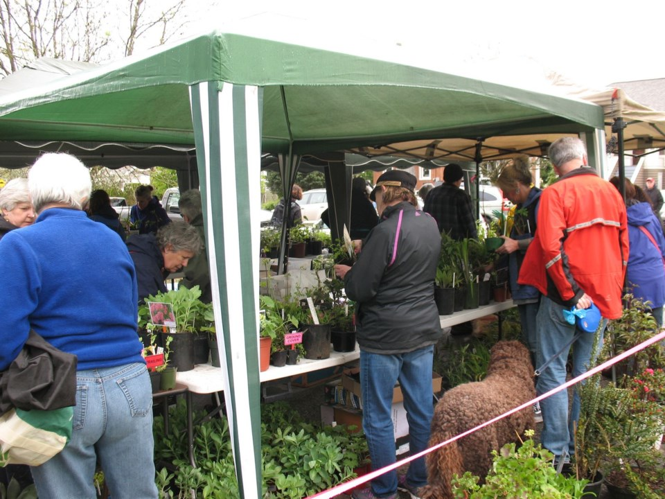 New Westminster horticultural society