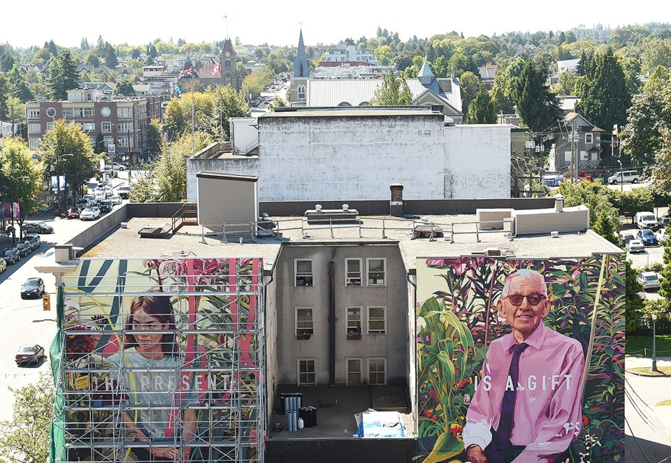 The view of two murals, Belvedere Court, Main Street and 10th Ave. Take from atop the Lee Building.