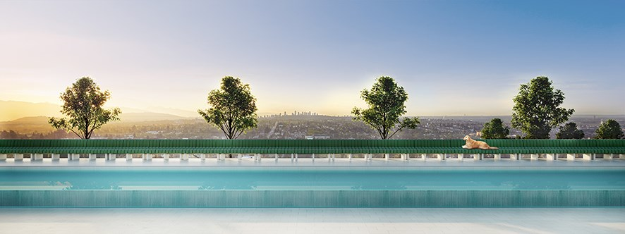 Clemande x Oakridge Amenity Pool Eye Level