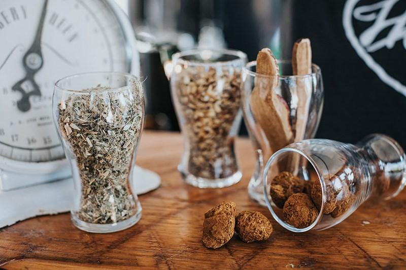 Howl Brewing's Dan Van Netten uses blessed thistle, reishi mushroom and chaga mushroom in some of hi