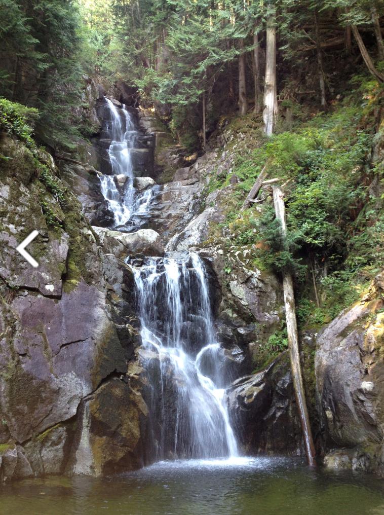 The upper waterfalls, Widgeon Marsh