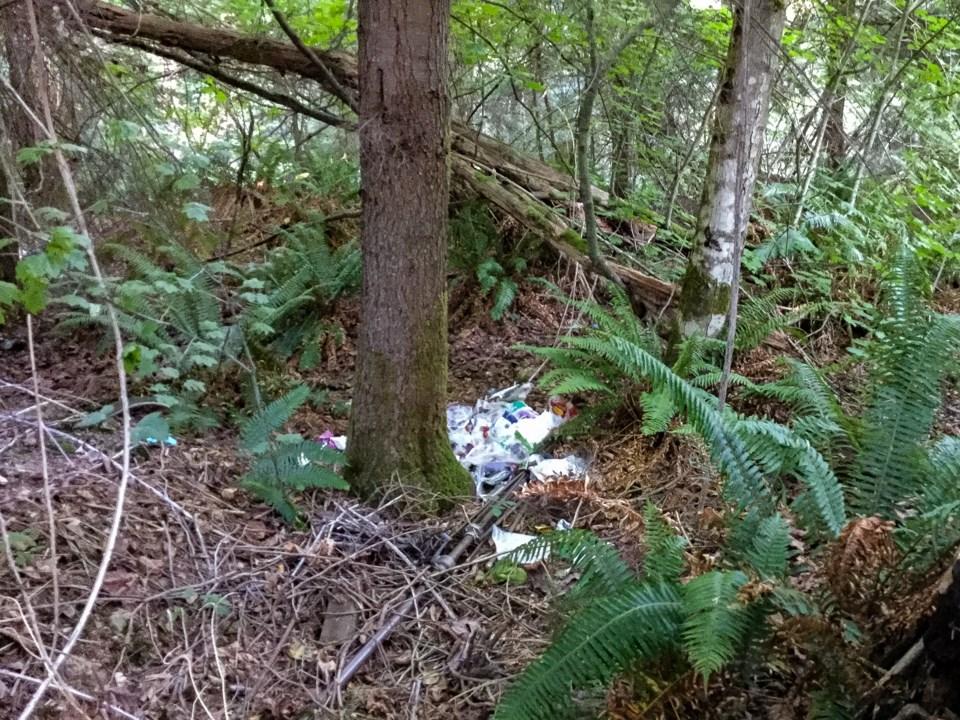 Plastic trash along Hoy Creek Trail