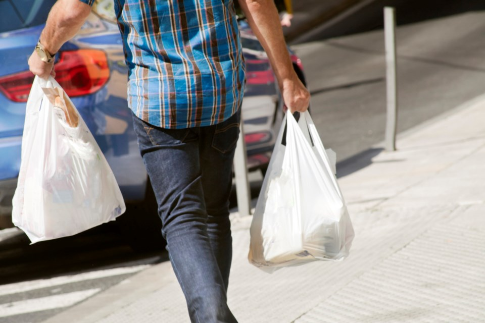 A ban forbidding business owners from providing carry-out plastic bags is the most wide-reaching and