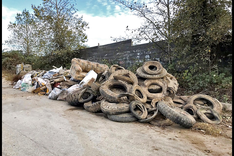 Some of the illegally-dumped waste that David Clarke and volunteers collected during a recent clean-up at Triangle Beach.