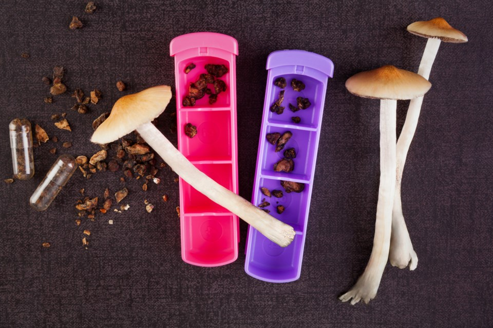 City council's recent debate over a motion concerning magic mushrooms was trippy, to say the least.
