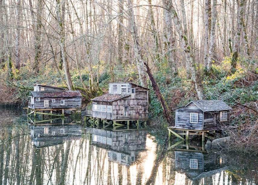 Maplewood shacks