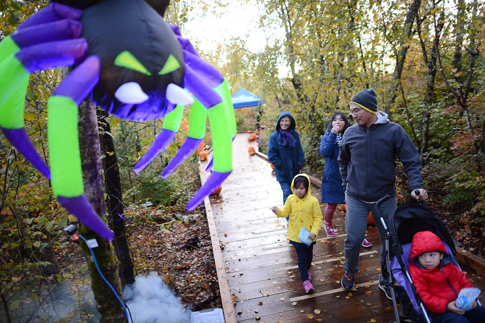 Wild Things at the Richmond Nature Park had kids of all ages entertained on the weekend. Photos by Boaz Joseph/Special to the News