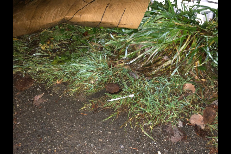 A needle was found behind 478 East Columbia St. in New Westminster. Traft Telseke photo