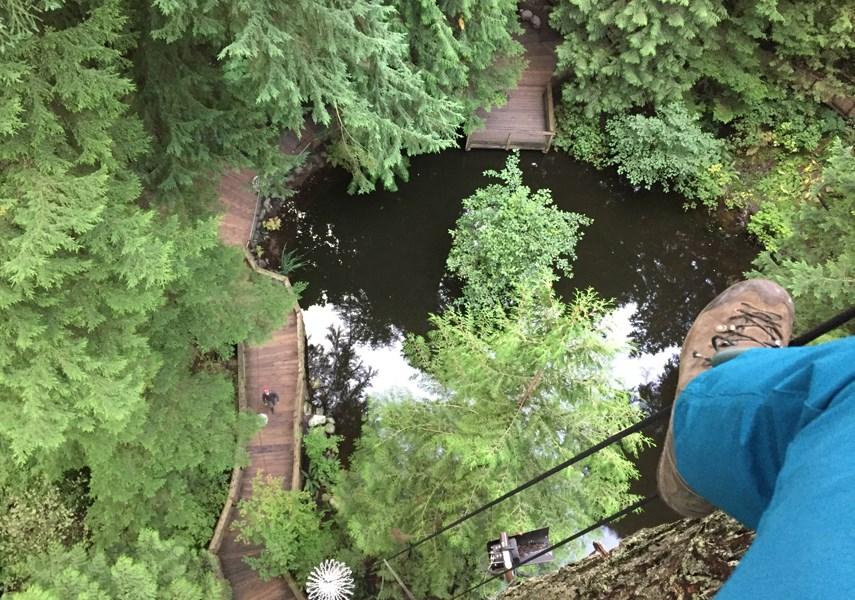 Meet the man who decorates the 300-foot trees at Capilano Suspension Bridge_0