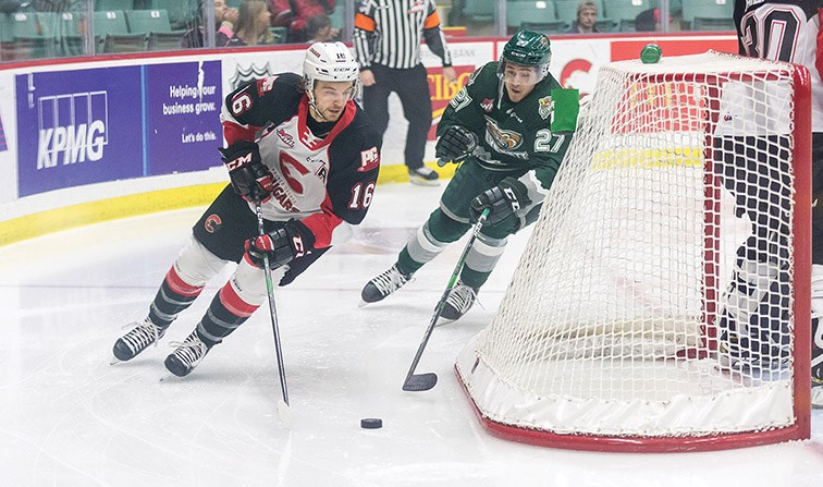 Silvertips slick in rematch with Cougars _0