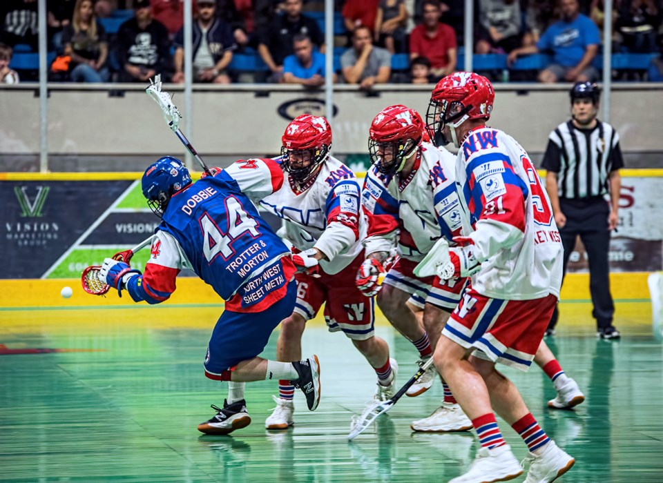 Salmonbellies draft