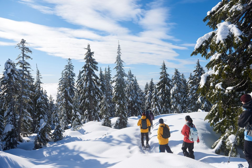Each winter, Metro Vancouver's Water Services department operates watershed snowshoe tours, during w