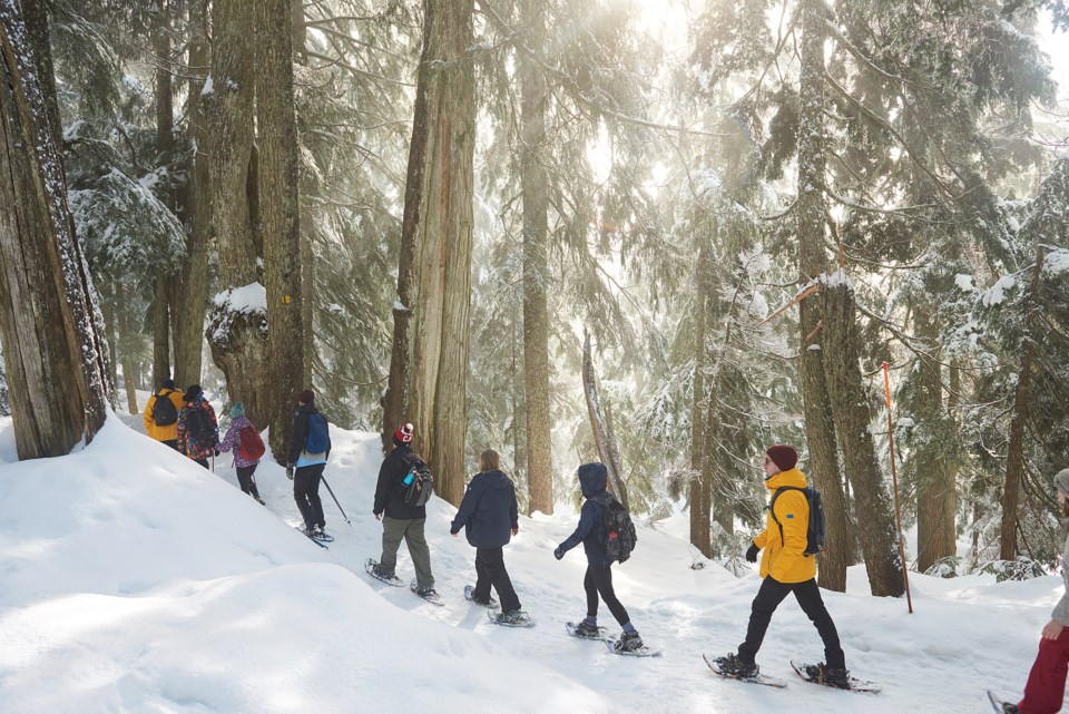Metro Vancouver operates winter watershed snowshoe tours each year between February and March and su
