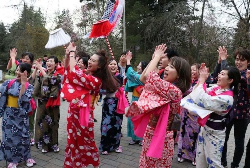 Sakura Days