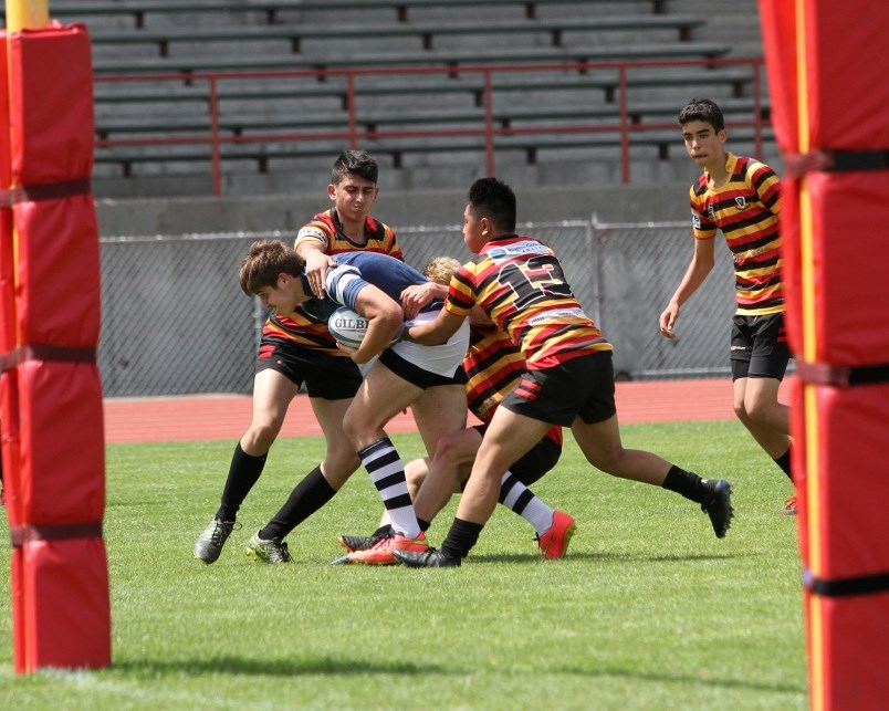 Byrne rugby