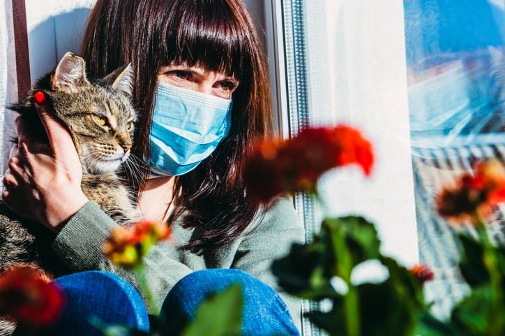 coronavirus-pets