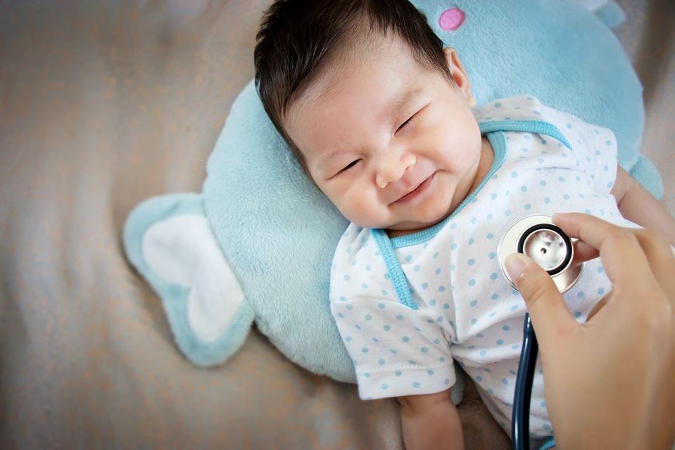 terra nova midwifery