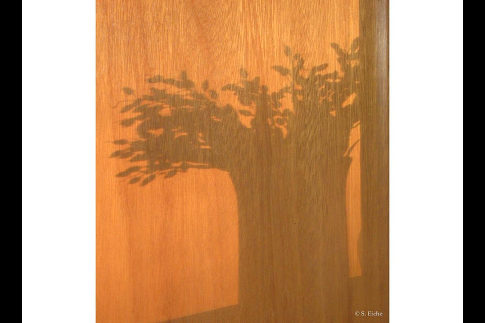 A vase of flowers casts its shadow on a door. Photo: © S. Eiche