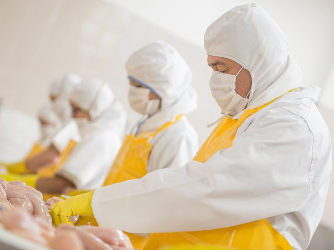Workers in a poultry plant