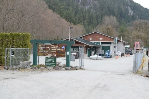 Squamish's Tenderfoot Creek Hatchery.