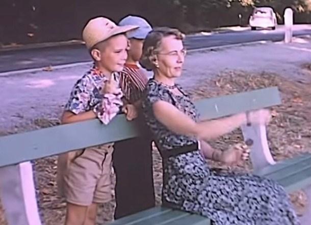 Stanley Park 1959