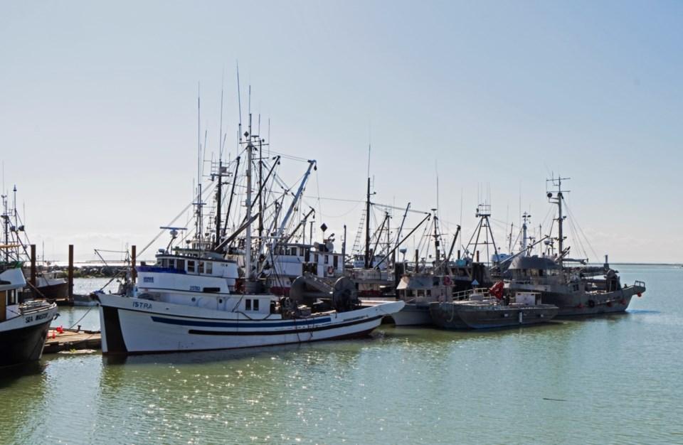 fishing boats steveston harbour