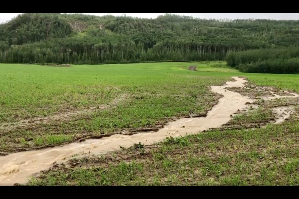 Heavy rains drained from the South Taylor Hill in June carved up and flooded the fields at the Westgate farm below the hillside.