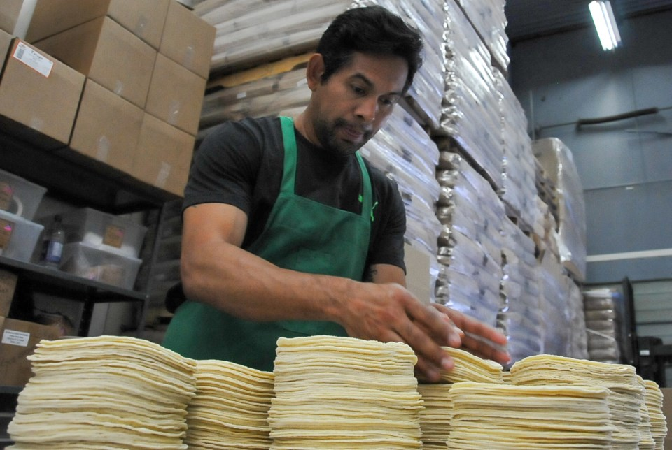 Bleyder Martinez collects stacks of corn tortillas as they come off the assembly line. In charge of