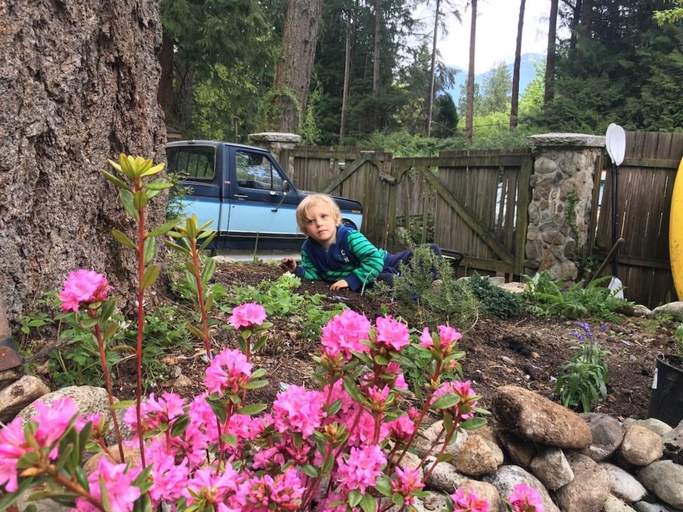 Meet Bowen's three-year-old gardener_0