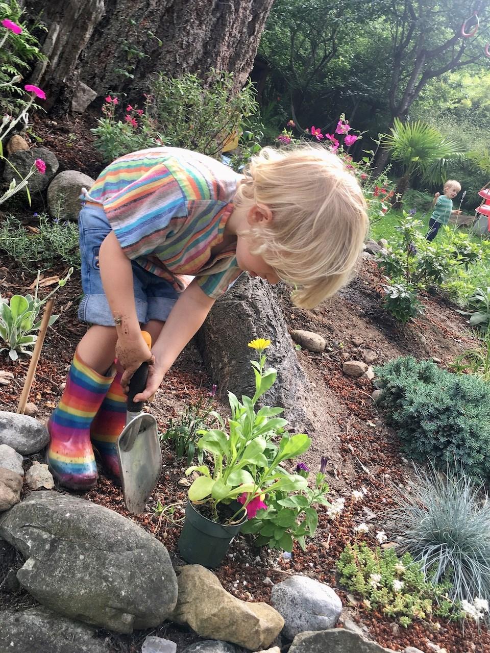 Meet Bowen's three-year-old gardener_2