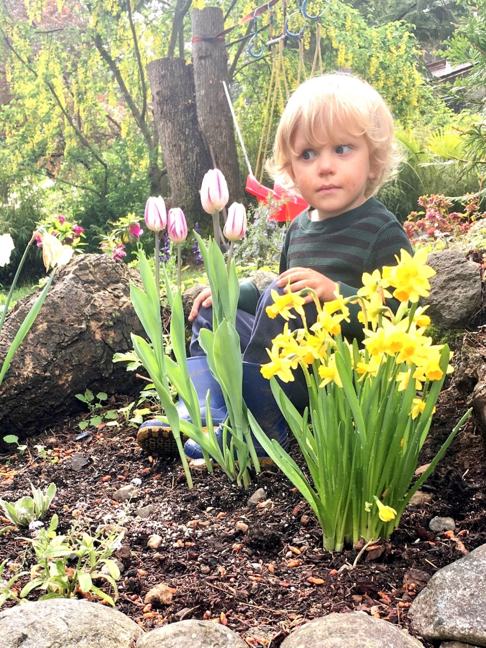 Monty in his garden with some yellow flowers