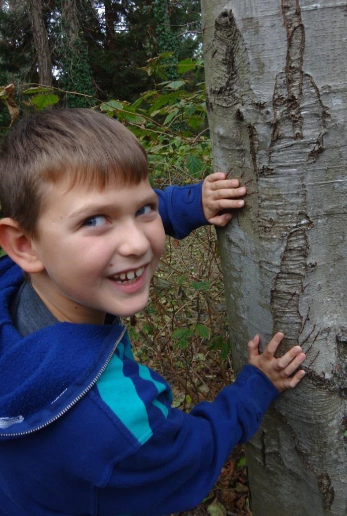 A kid meets a tree during the Mossom Creek Summer camp. This year, all activities will be held outsi